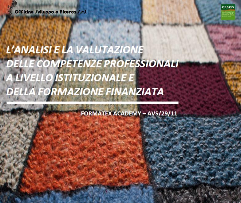 L'analisi e la valutazione delle competenze professionali a livello istituzionale e della formazione finanziata